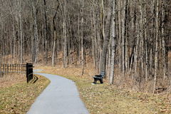 Peaceful path winding through the woods, with bench one can sit on to enjoy the view Royalty Free Stock Images