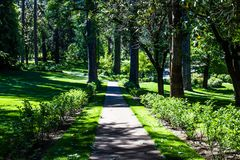 Peaceful Path Through Wooded Park. Peaceful Walking Path Through Wooded Park In Late Afternoon Sun Stock Image