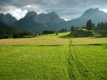 A peaceful place. Summer grazing in the mountains Stock Photography
