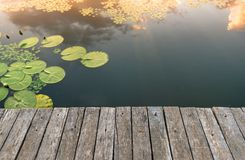 Peaceful place at the pond. Jetty and Peaceful place at the pond Royalty Free Stock Photography
