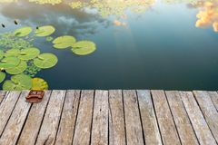 Peaceful place at the pond. Jetty and Peaceful place at the pond Stock Photography