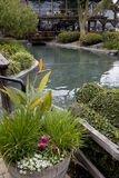 Peaceful Pond Royalty Free Stock Photography