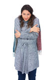 Peaceful pretty model with winter clothes being cold Royalty Free Stock Photography