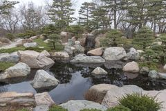 Peaceful and quiet pond. A peaceful and quiet pond and garden Royalty Free Stock Photography