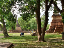 Peaceful reading under green tree in the ruin of old capital of Thailand Stock Image