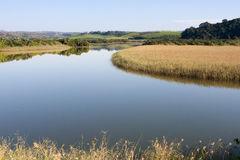 Peaceful reflections in a very calm lagoon south of Durban in South Africa. The KZN South Coast presents beautiful scenery all year round, and calm scenes like Stock Image