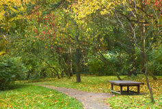 Peaceful resting place. Lonely bench in a park during fall stock photo