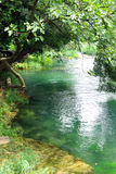 Peaceful river. View of a magnificent peaceful river in Krka park in Croatia Royalty Free Stock Images