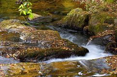 A peaceful river. At autumn Royalty Free Stock Images