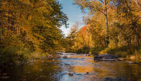 Peaceful River in Fall Stock Photography