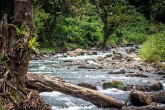 A peaceful river in Papua New Guinea. Popular for gold mining, on the island of Bougainville, Papue New Guinea royalty free stock images