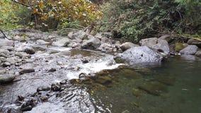 Peaceful. River running through Iao Valley Stock Photos