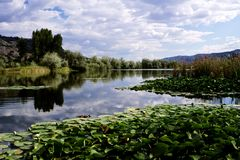 Peaceful River Scene Royalty Free Stock Image