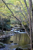 Peaceful River. River scene taken in the Great Smoky Mountains National Park Stock Image