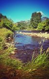 Peaceful river side. Beautiful day down by a peaceful river Stock Photo