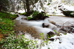 Peaceful river with snow. In the forest during the spring season. Long exposure Stock Image