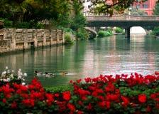 Free Peaceful River Walk Of San Antonio Texas Royalty Free Stock Photo - 165689595