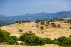Peaceful rural landscape of Sardinia Royalty Free Stock Photos