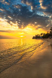 Peaceful sandy beach sunset with green foliage and st Stock Photo