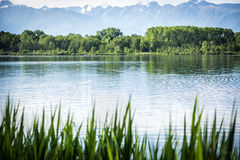 Peaceful scene of a lake surrounded by trees. Tranquil, peaceful scene of a lake surrounded by trees and vegetation Stock Images