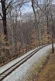 Peaceful scene of railroad tracks through the woods. Peaceful woodsy scene, with set of railroad tracks winding through the area Stock Images