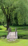 Peaceful scene with weeping willow and wood bridge Royalty Free Stock Image