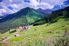 Lush green alpine peak under a blue cloudy sky in Berwang, Tirol. Peaceful scenic landscape of lush green alpine peak under a blue cloudy sky with wildflowers Stock Photo