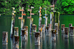 Peaceful sea cove. In vancouver island, british columbia, canada Royalty Free Stock Photos