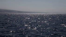 Peaceful seascape stock video