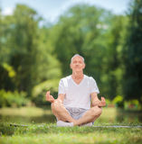Peaceful senior man meditating seated in a park. Peaceful senior man meditating seated on a blanket in a park by a lake shot with tilt and shift lens Royalty Free Stock Images