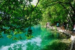 Calm Turquoise Water, Plitvice Lakes, Croatia. Peaceful and serene Plitvice Lakes, Plitvice National Park, European Union, Dalmatia, a UNESCO World Heritage royalty free stock images