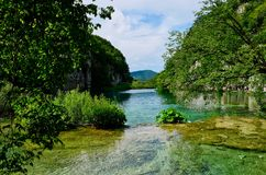 Calm Turquoise Water, Plitvice Lakes, Croatia Royalty Free Stock Photos