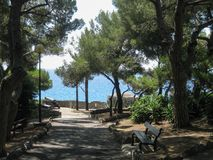 Peaceful, shady park by the sea in Bordighera, Italy. A quiet park bench with a seaside view awaits locals and travelers seeking a break from the day's royalty free stock photography