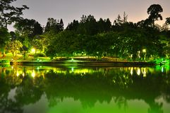 Peaceful Singapore Botanical Garden pond by night Stock Photos
