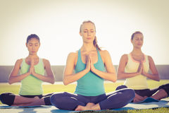 Peaceful sporty women doing lotus pose Royalty Free Stock Images