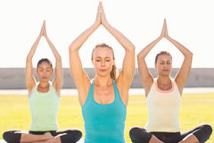 Peaceful sporty women doing lotus pose Royalty Free Stock Image