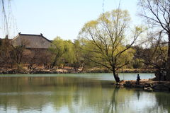 The peaceful spring. The spring of weiming lake Stock Photo