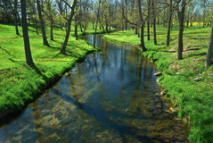 Peaceful stream. Beautiful stream in rural area in the spring Royalty Free Stock Images