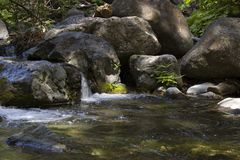 Peaceful stream. Peace and tranquility of a mountain stream Stock Images
