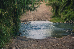 Peaceful Stream Stock Images