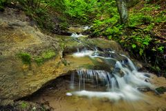 Peaceful Stream Stock Photography