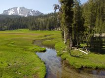 Peaceful stream in Lassen National Park. Stream meanders through a meadow in Lassen National Park Stock Photo