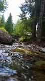 Peaceful Stream Stock Photos