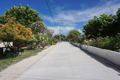 Peaceful street flowering trees French Polynesia Stock Photography