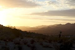 Peaceful sunrise in the desert in Yucca Valley California. With mountains in the background Stock Photos