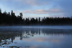 Peaceful Sunrise Wilderness Lake Scene. A pink tinged, slightly cloudy sky and the forest beneath it reflects in a calm wilderness lake as a soft mist skims its Stock Images