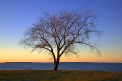A Peaceful Sunset Stock Images