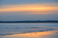 Peaceful sunset over muddy creek Royalty Free Stock Images