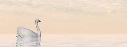 Peaceful swan - 3D render Royalty Free Stock Photography