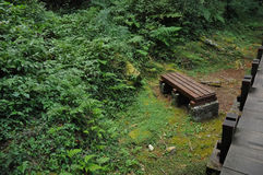 Peaceful time to rest on a bench in scenic natural park Stock Photography
